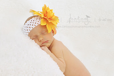 Newborn Photography in Winston Salem Triad - Fantasy Photography, LLC