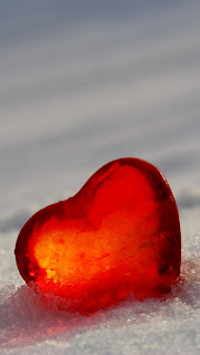 Free Download Valentines Day 2013 Love HD Wallpapers for iPhone 5
