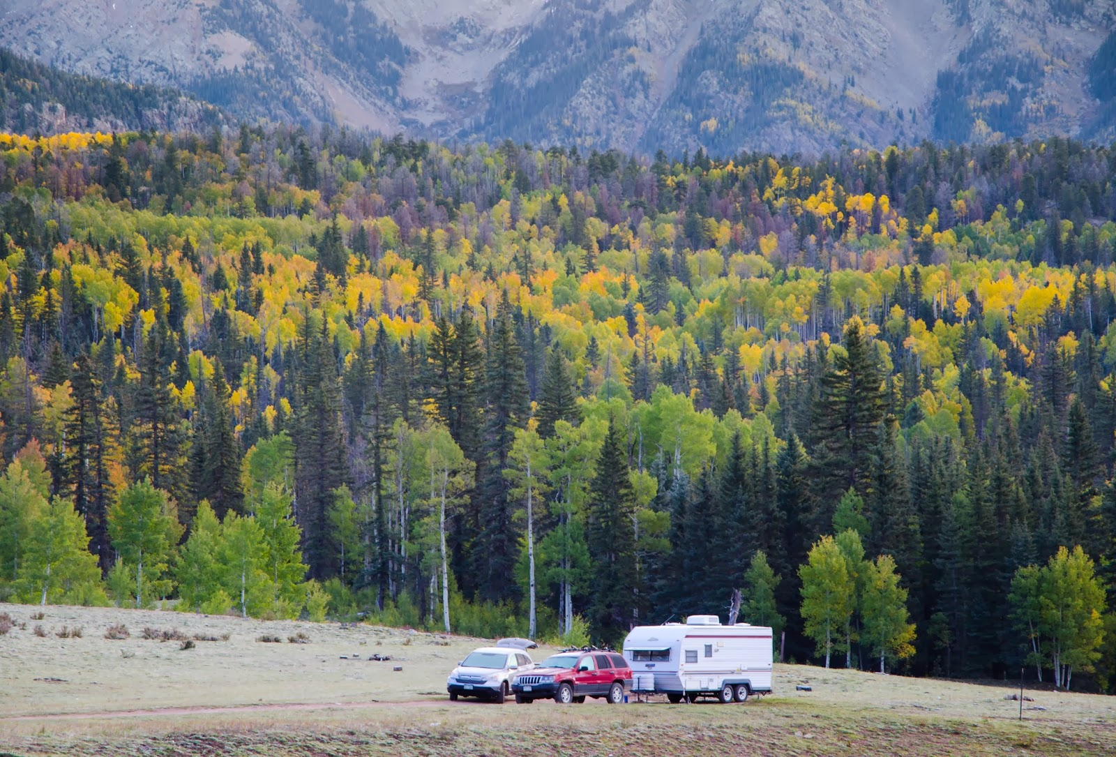 Fall color in the Mountains of Colorado, trees in full fall color and travel trailer camping
