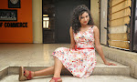 Vishnu Priya dazzling Photo shoot Gallery-thumbnail