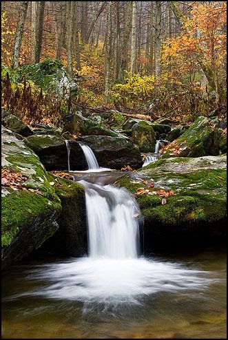 Shenandoah-National-Park