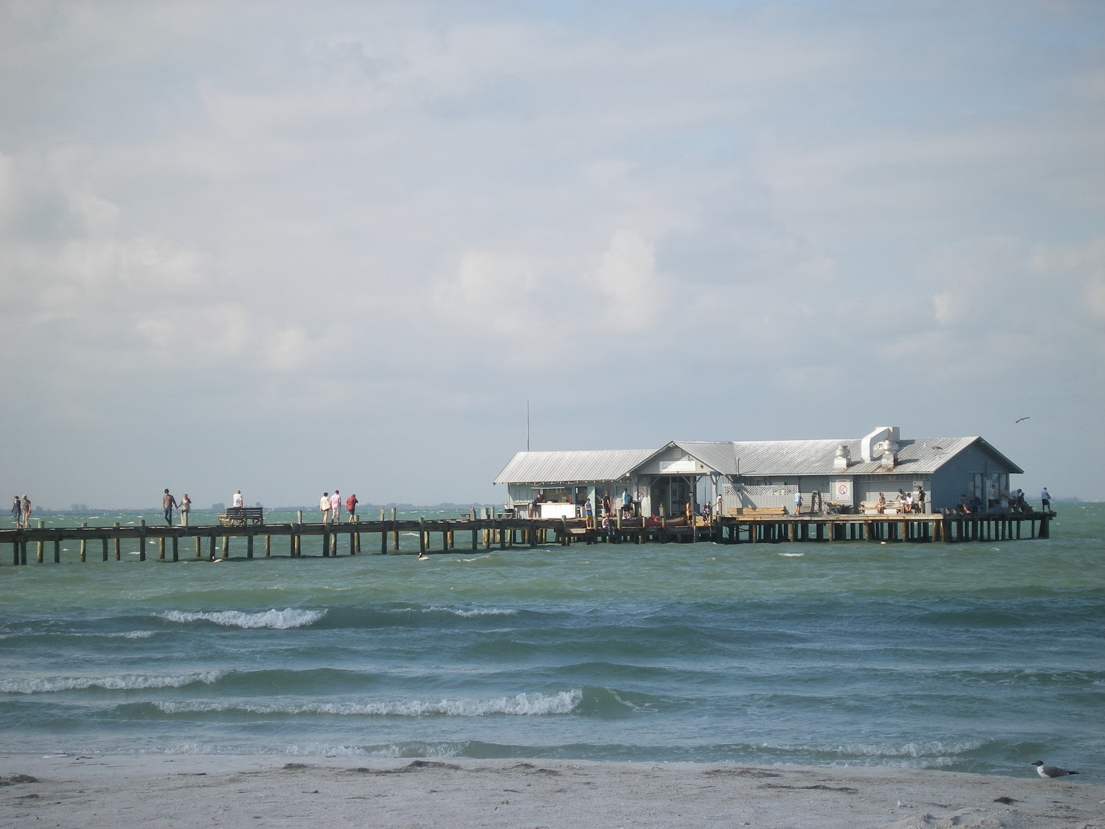 Report from the florida zone anna maria city pier for Anna maria island fishing pier