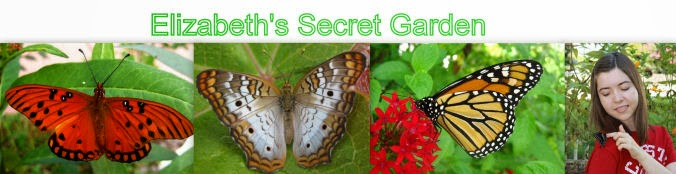 Elizabeth's Secret Garden