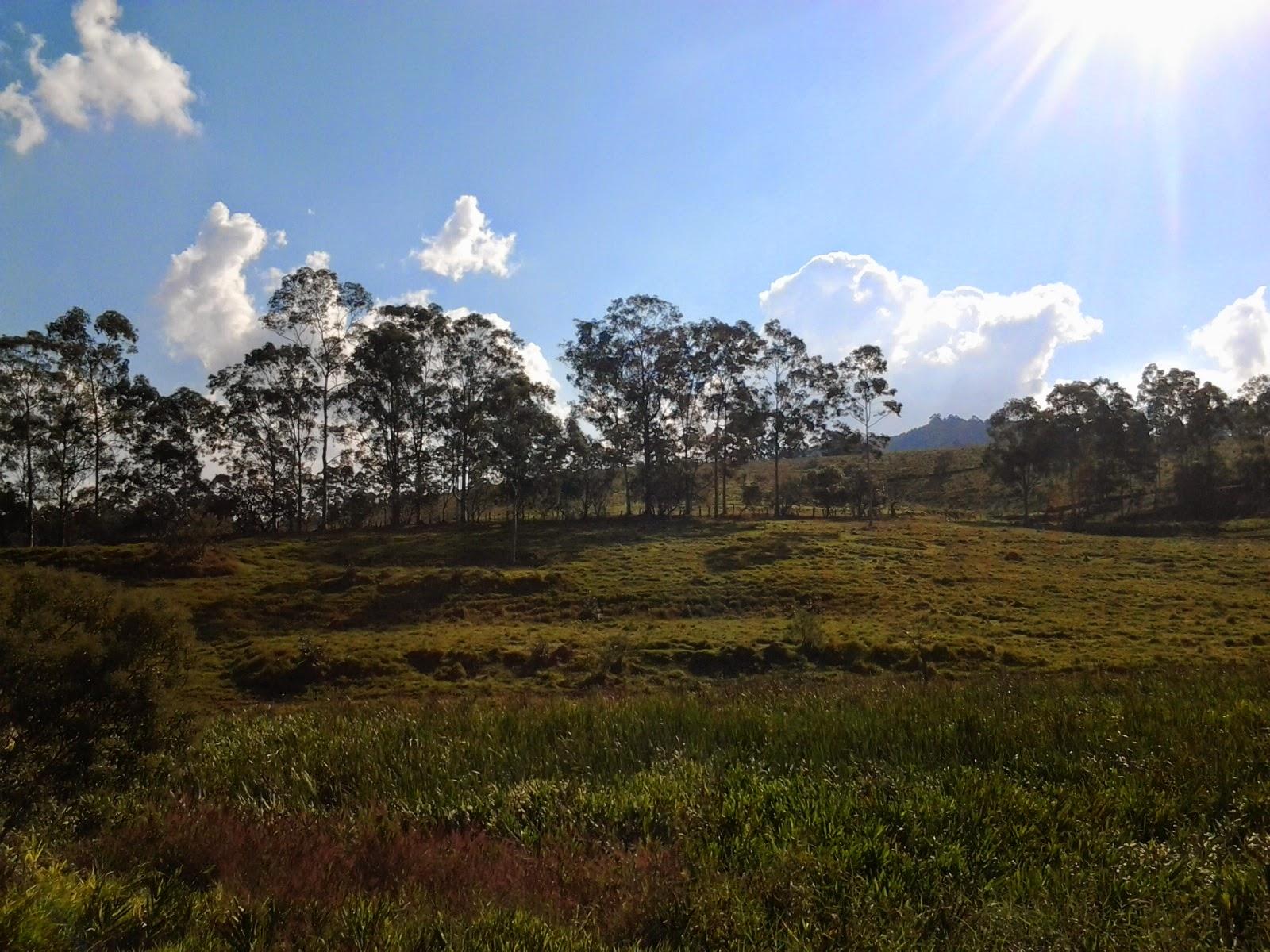 Foto tirada em Cabreuva