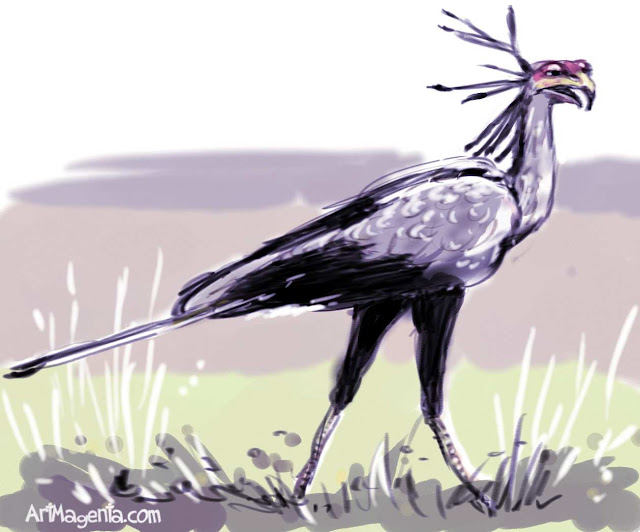 Secretarybird sketch painting. Bird art drawing by illustrator Artmagenta
