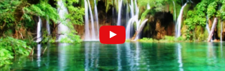 Aurel Gheorghe — Ca un pom sădit lângă un izvor de apă