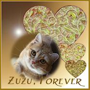 Precious Zuzu