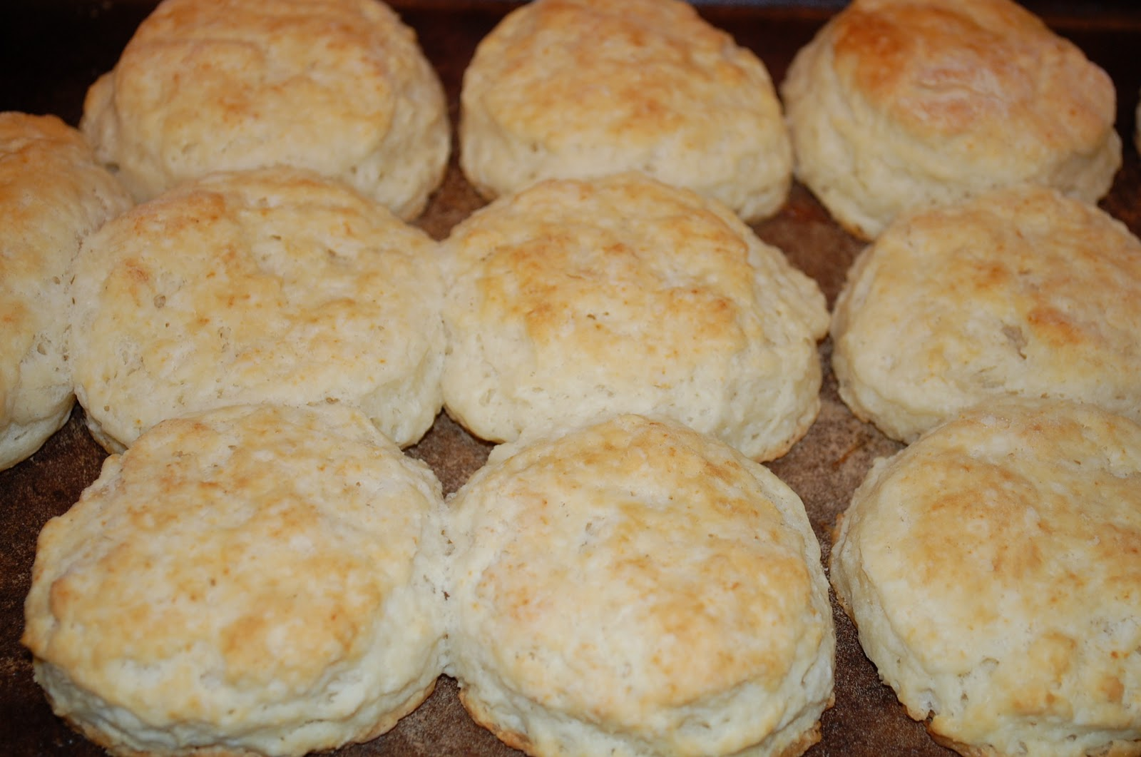 Eating From The Homestead: Homemade Biscuits & Sausage Gravy