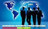 Oportunitati de afaceri