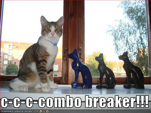 combobreakercat.JPG