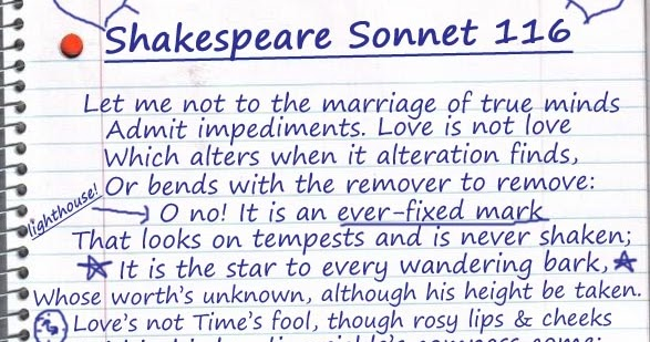 Essay On Sonnet 116