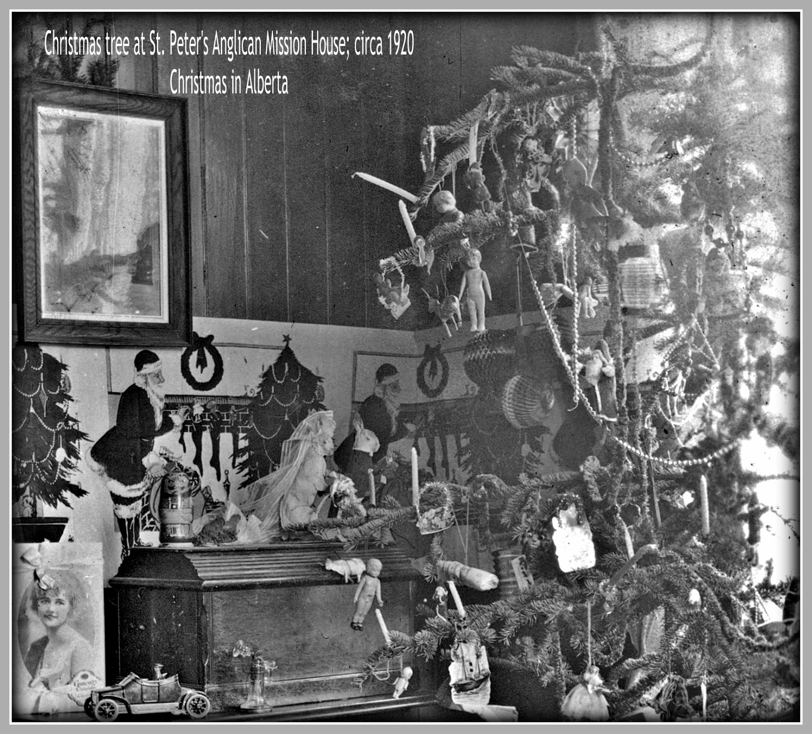 Fell in love with this circa 1920 Christmas tree -- which we sliced up for  closer inspection -- and even though the candles (eeeeek) coupled with  honeycomb ...
