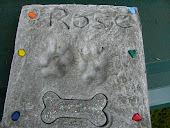 Rose's Paw Prints