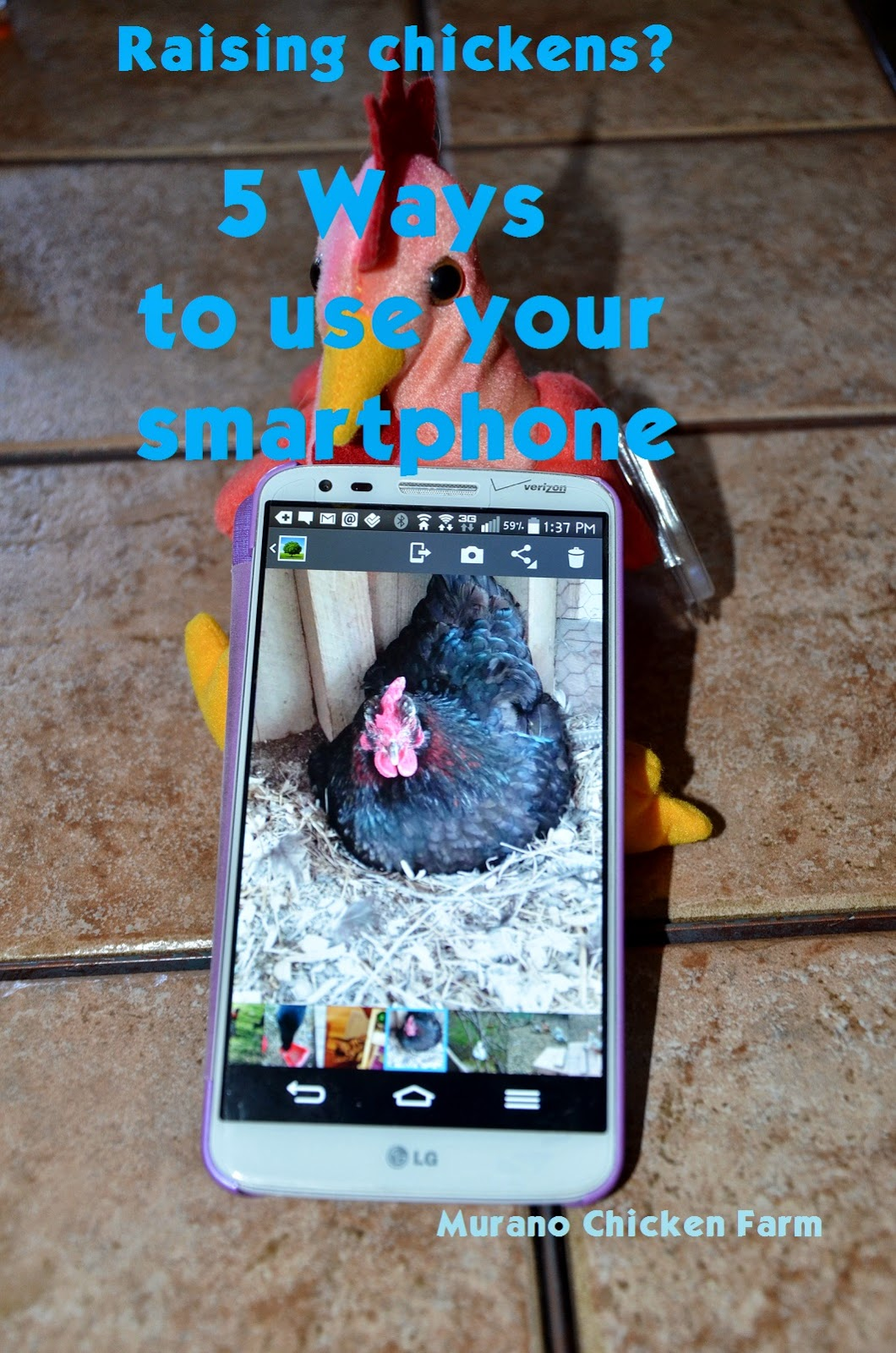 Raising chickens? 5 uses for a smartphone