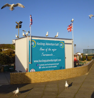 Seagulls in Hastings