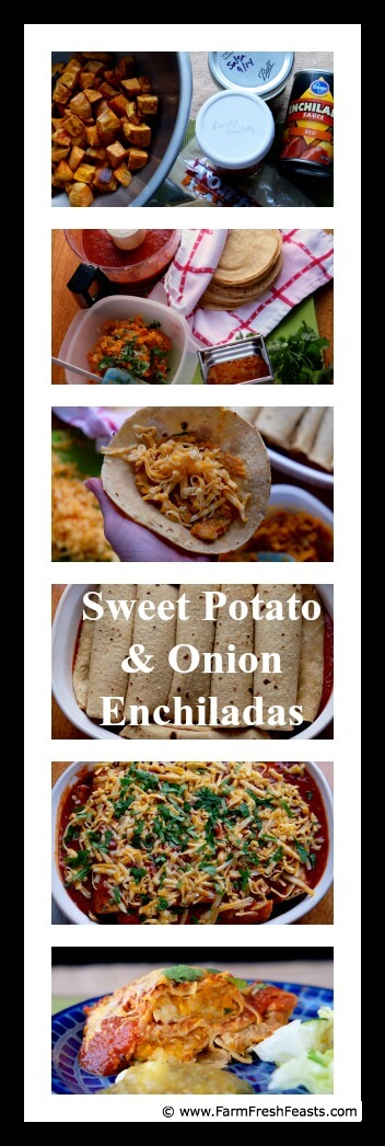 Recipe for a vegetarian enchilada casserole of corn tortillas stuffed with spicy sweet potatoes and onion
