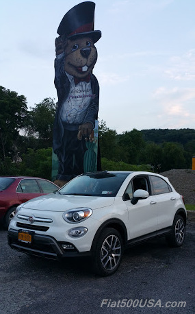 Punxsutawney Phil and the FIat 500X