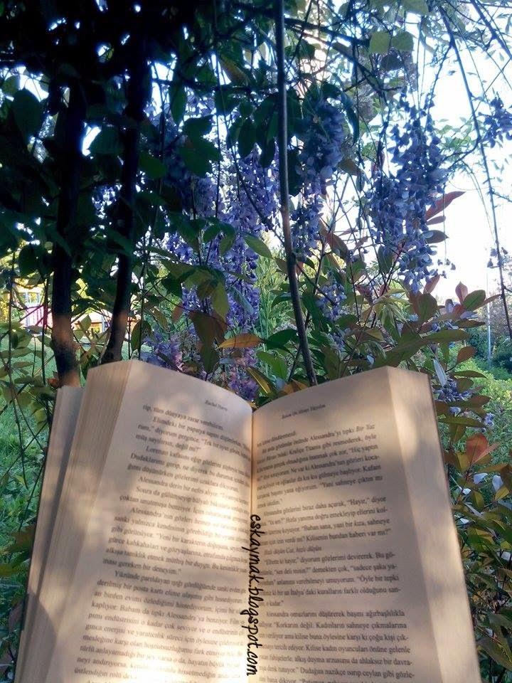 kitap, ne baktın, hayırdır, atarlı kız, okuma, okuma sevgisi, kitap sevgisi, parkta kitap okuyan kız,