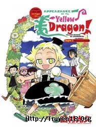 Appearance of the Yellow Dragon