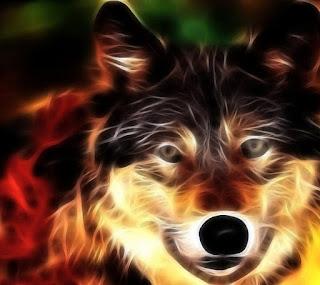 Wallpaper Keren Anjing Serigala