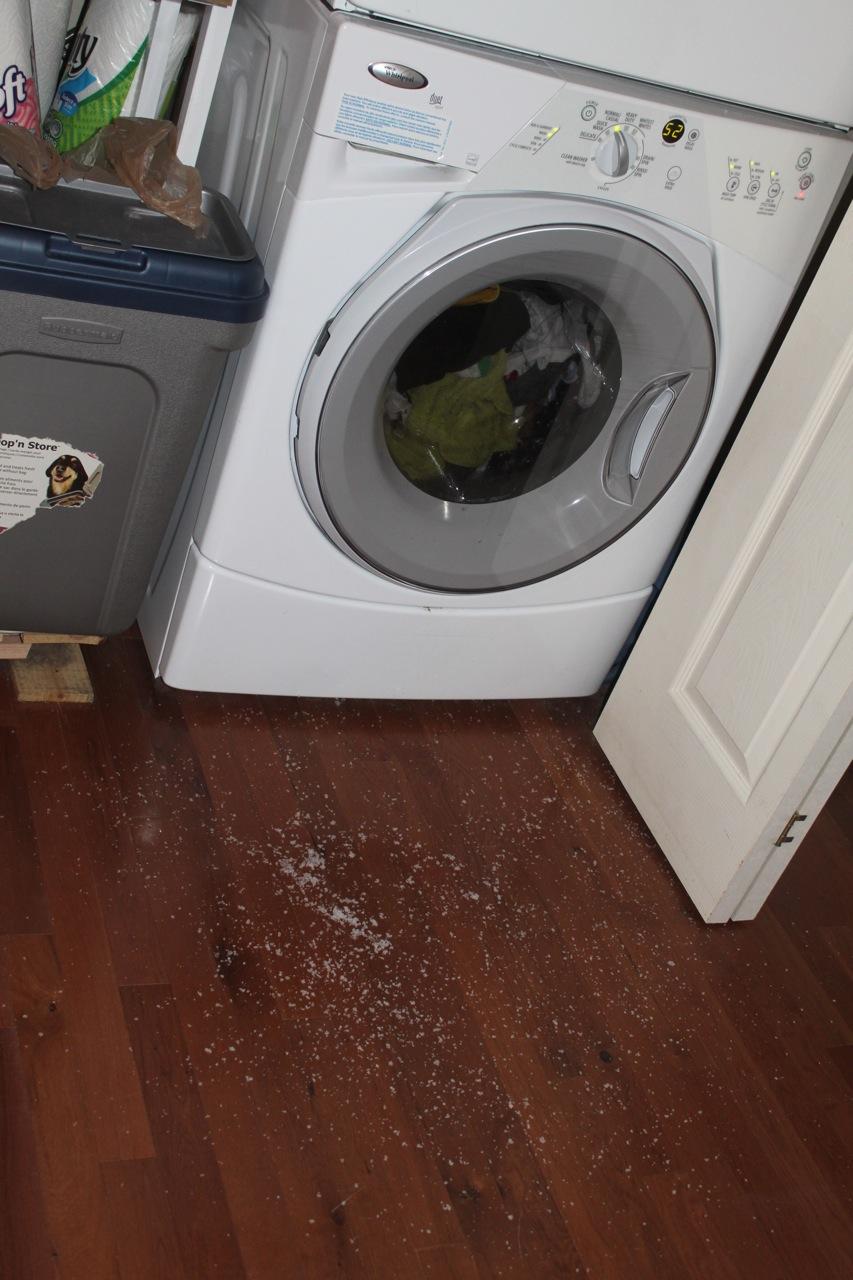 disposable in washing machine