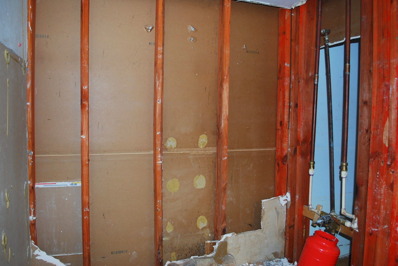 demo black mold sheetrock
