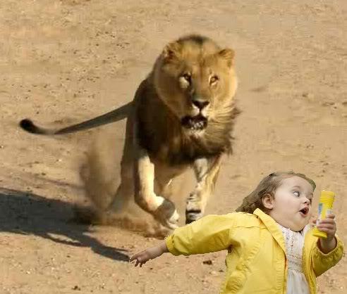 leão-correndo