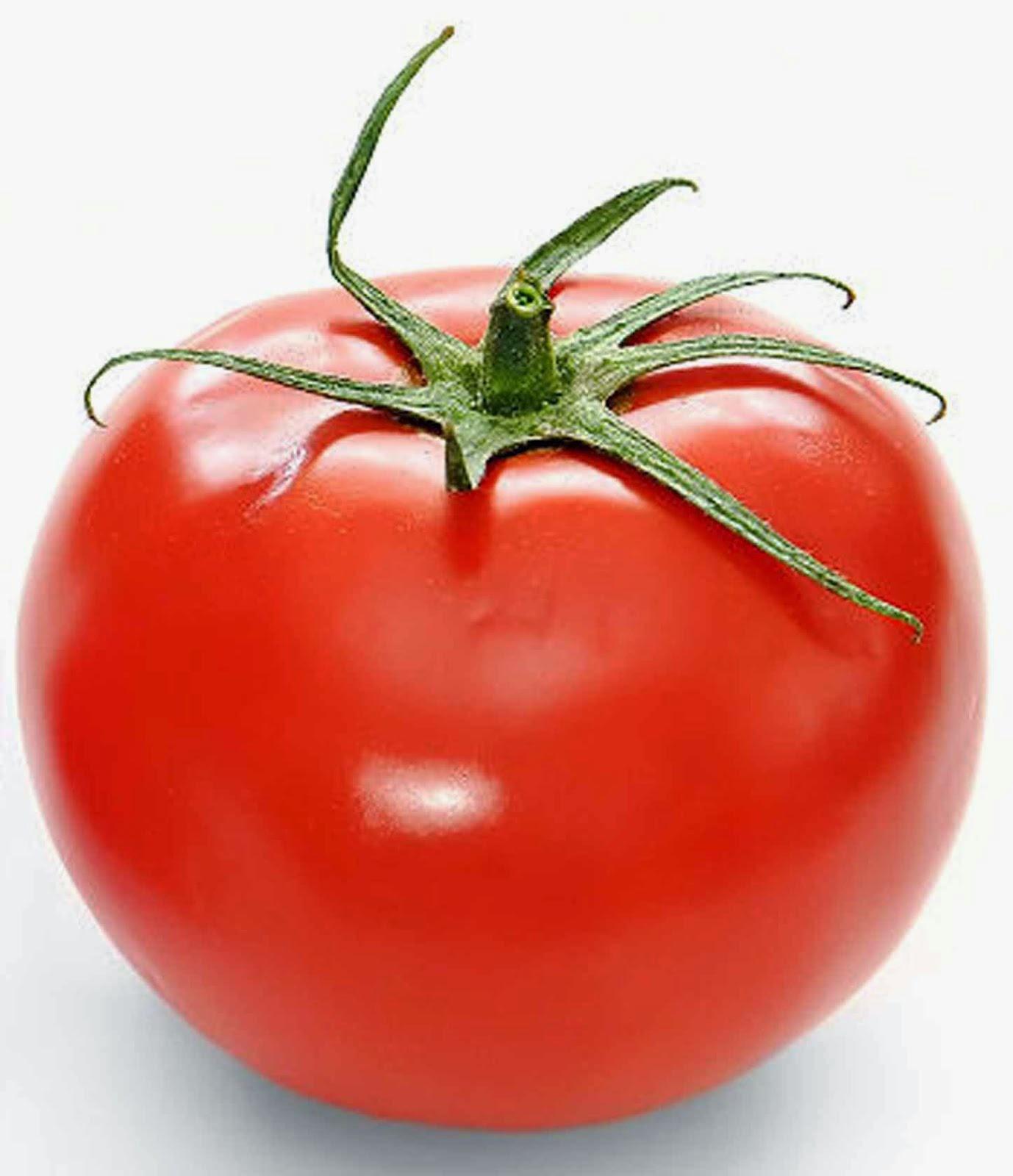 tomat untuk perawatan rambut