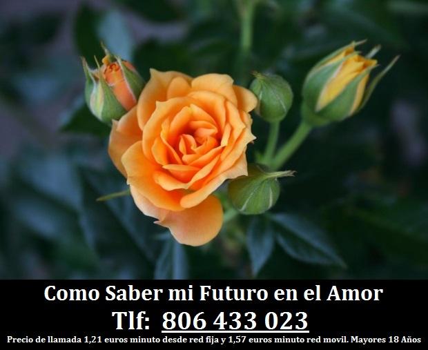 Como Saber mi Futuro en el Amor