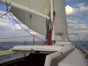 Sailing Off Of Santa Monica