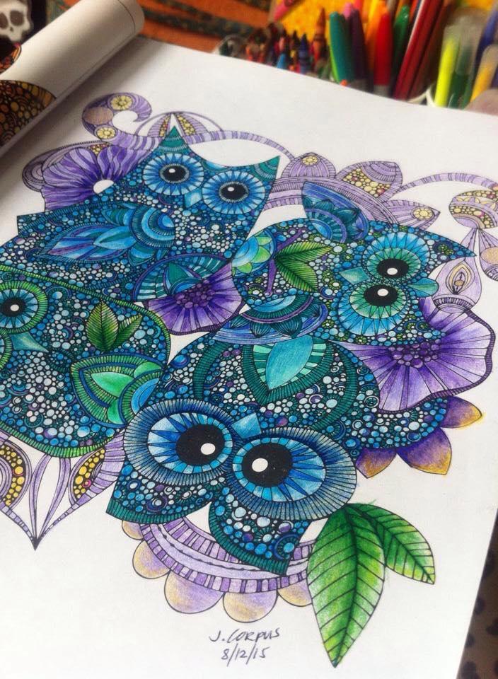 Kolorista Owl Colouring Book