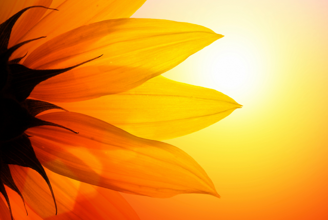 सूरज की किरणें करेंगी रोगमुक्त
