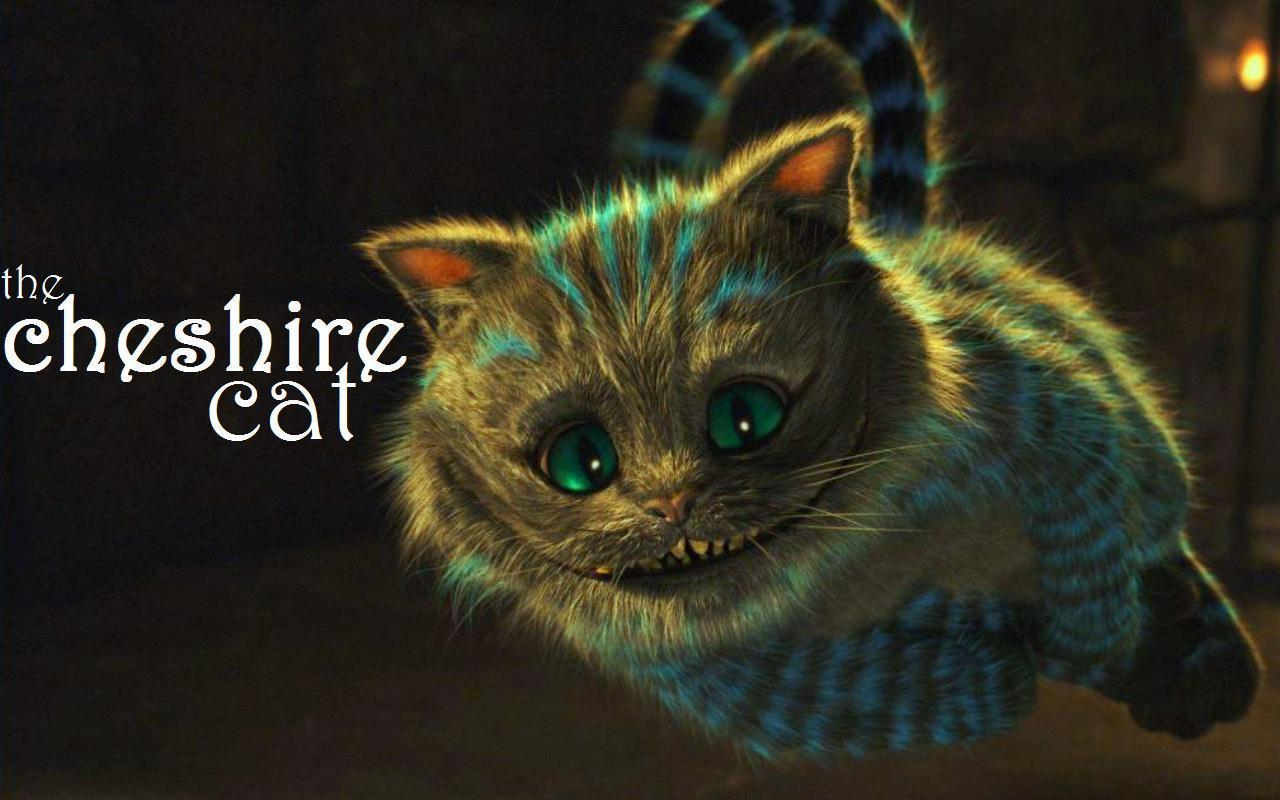 my top collection cheshire cat wallpaper