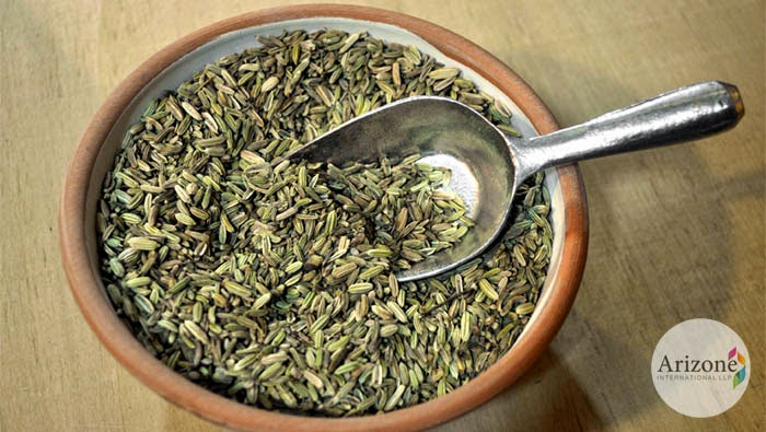 Fennel Seeds Arizone International LLP Vapi