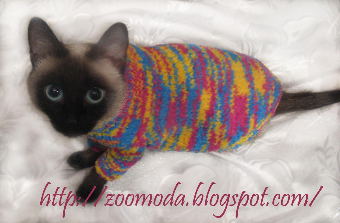 схема вязания спицами свитера для собак