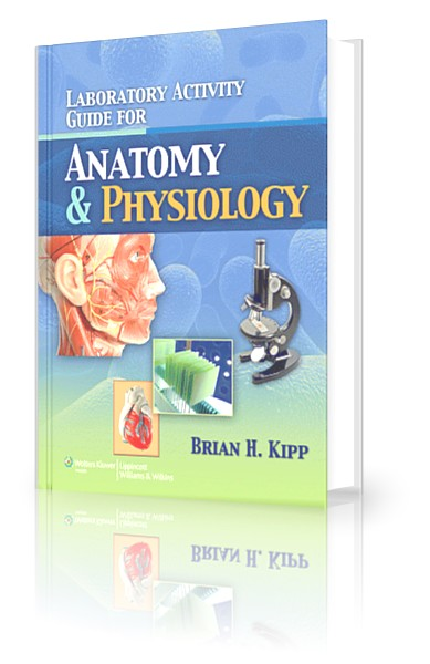 anatomy 2 lab guide Study a&p ii lab midterm flashcards flashcards  created 2 years ago by  stingraygecko 412 views pulled only from the pages listed on the study guide.