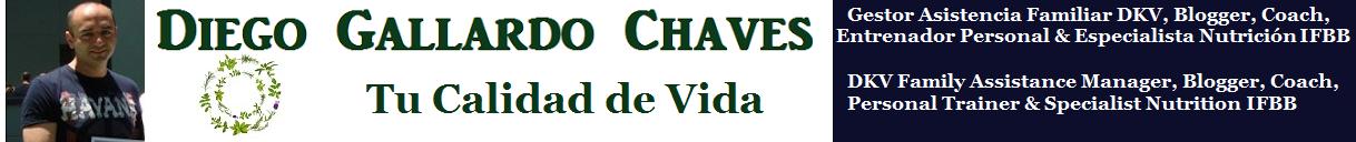 Diego Gallardo Chaves