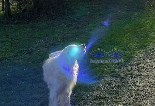 Cząsteczka najwyższej Wibracji - Energii Anielskiej MICHAŁA Archanioła