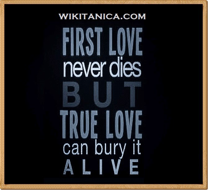 Bio Love Quotes Interesting Best Love Status For Whatsapp And Facebook