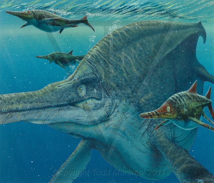"""Résultat de recherche d'images pour """"Shastasaurus"""""""