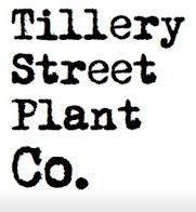 Tillery Street Plant Co.