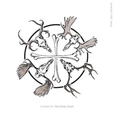 moose, elk, deer skull