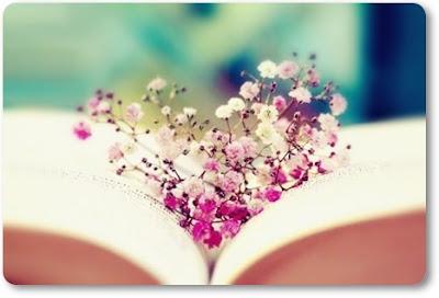 rosa brudslöja, hjärta av brudslöja