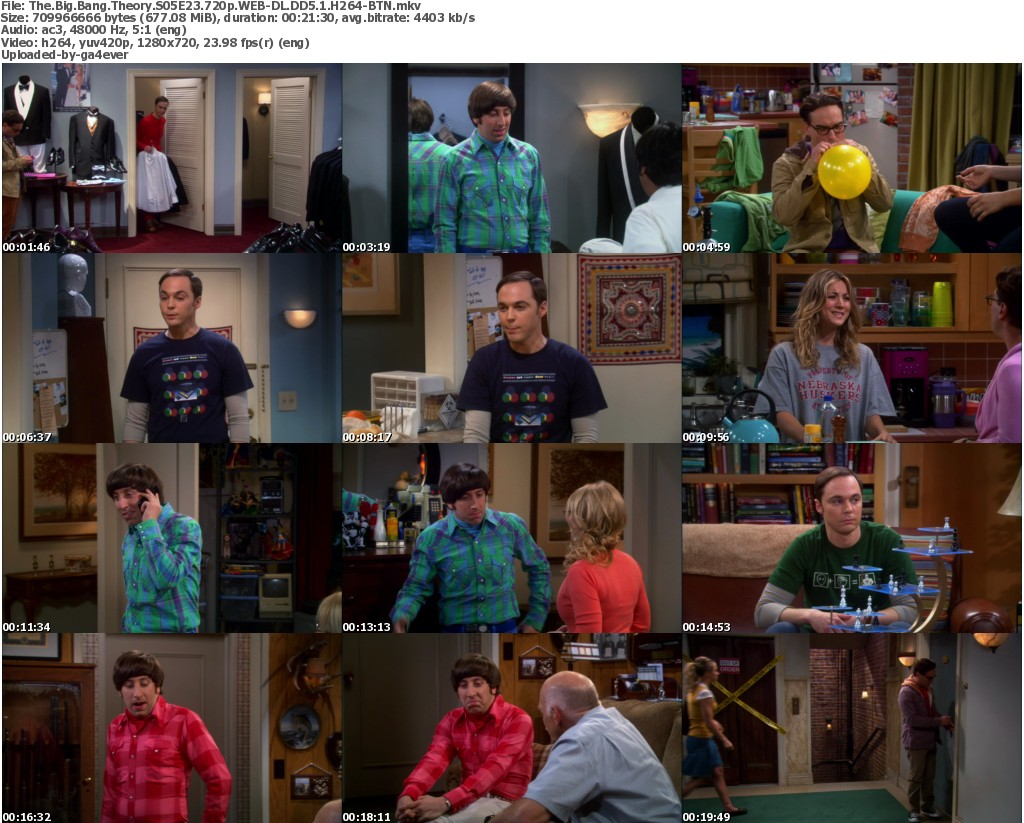 The Big Bang Theory Capitulo S03E14 Dublado Assistir