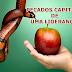 EBD 3º Trimestre de 2014: Lição 11 - Pecados capitais de uma liderança