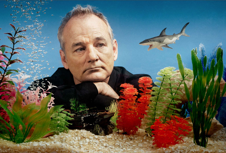 Bill Murray and the Left Shark