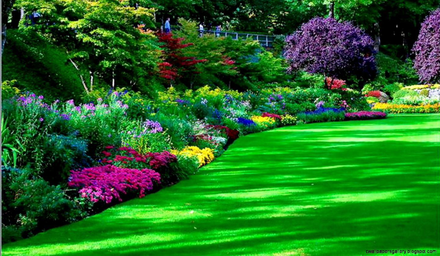 43 Garden Modern HDQ Cover Wallpapers