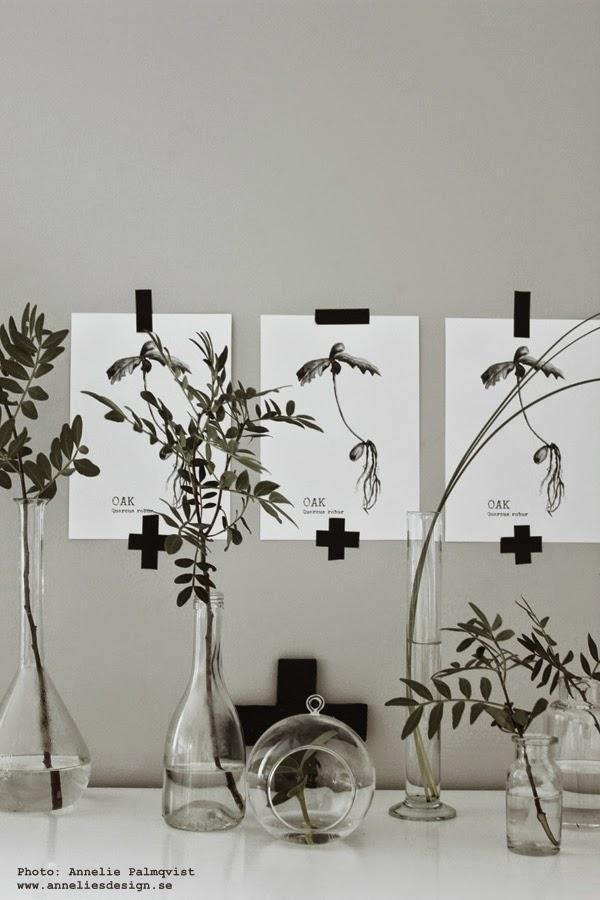 oak tavla, ekollon tavlor, svartvita posters, svartvit poster, prints, inredningstips, inspiration, konsttryck, webbutik, webbutiker, webshop, tre tavlor på rad i samma motiv, gröna växter, kors, washitejp