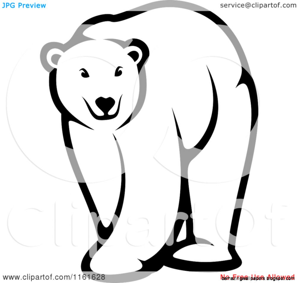 Baby Polar Bear Clipart   Clipart Kid