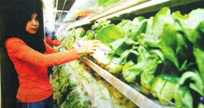 A shopper choosing vegetables at a supermarket in Shah Alam
